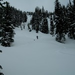 Grouty Ridge Tree Skiing