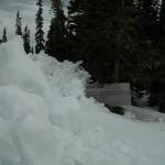 Moose sign at Summit