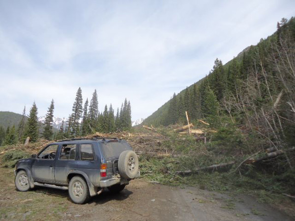 Avalanche debris on the East Hurley