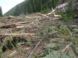 Huge pile of debris from a spring avalanche on the East Hurley