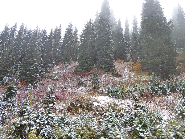 Snow at the Hurley summit on Oct 10 2017